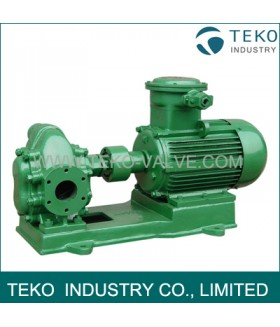 Gear Oil Pump, Palm Oil Pump, hydraulic Oil Pump