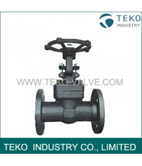 A105N Material API Flanged Globe Valve
