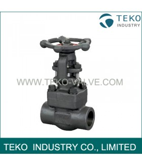 Bolted Bonnet Weld End Forged Steel Valve