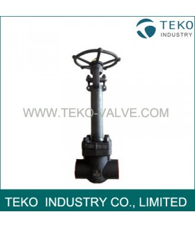 Forged Steel Cryogenic Valve