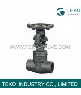 Welded Bonnet Forged Steel Gate Valve