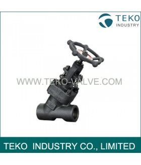 Y type Forged Steel Globe Valve