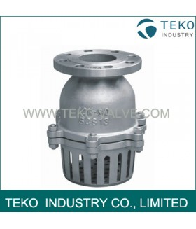 Swing Type Foot Valve