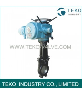 Motorized  Knife Gate Valve