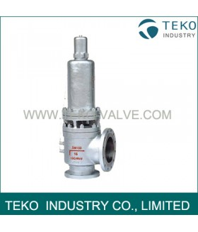High Temperature Safety Valve, with Radiator