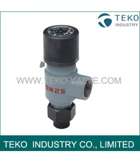 Spring loaded Thread Safety Valve