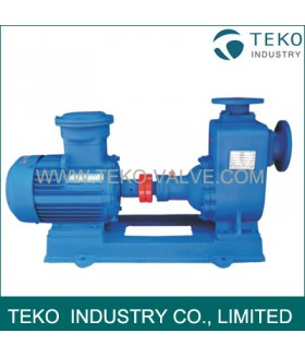 Priming Clean Water Centrifugal Pump