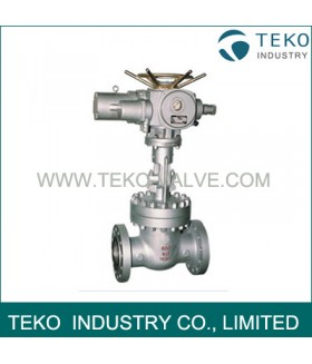 Electric Actuated Flanged End Gate Valve